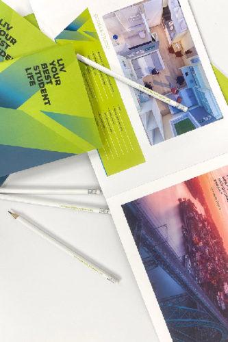 portfolio diseño gráfica liv folleto folleto